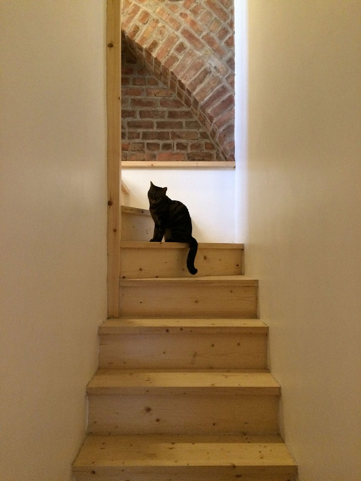 Stringerless stair House Extension Liverpool Architectural Emporium
